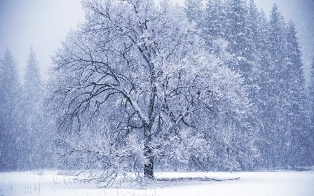 9 Things to Do to Optimize Fertility During Winter