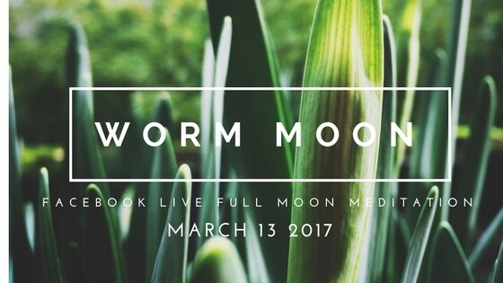 Finding Beauty with March's Full Worm Moon