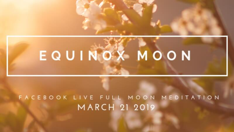 The Feminine, Your Period & the Moon: Celebrate with Me!