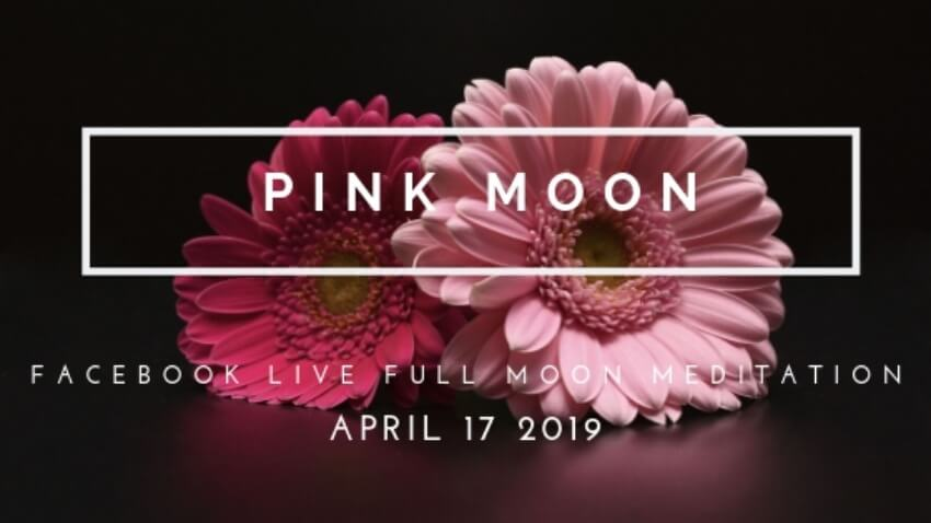 Grow the Hidden Seeds of Transformation With the Full Pink Moon